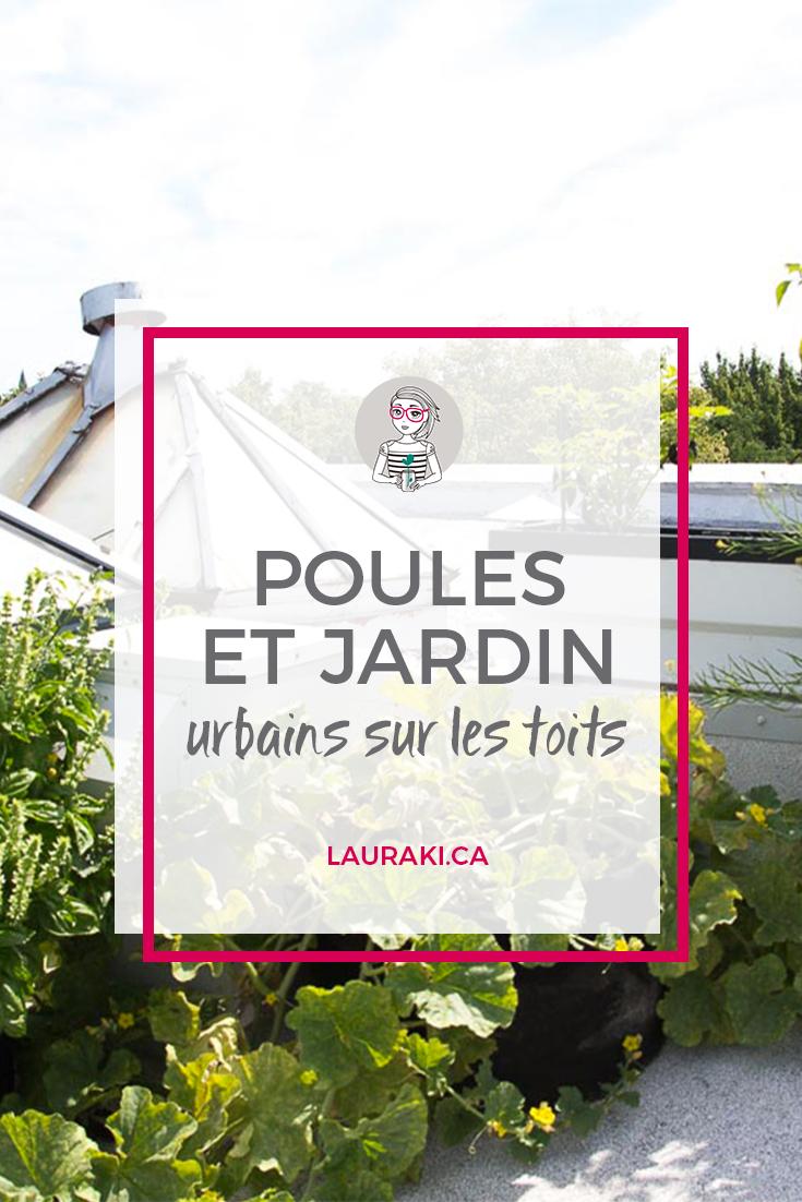 Des poules et un jardin sur les toits au coeur de Montréal || A urban roof garden with hens in Montreal #zerodechet #urbangardening #jardinurbain #montreal